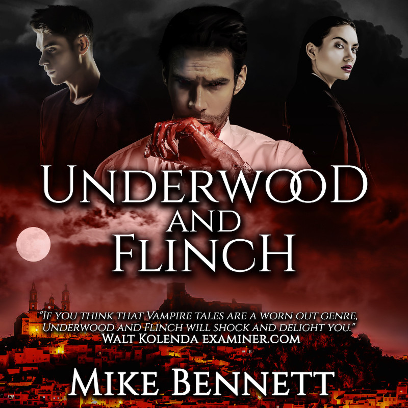Underwood and Flinch book cover